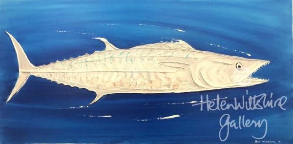Spanish Mackerel by Ben Wiltshire