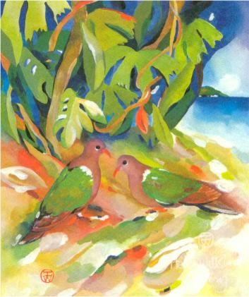 Emeral Doves by Helen Wiltshire Dunk Island Resort Series